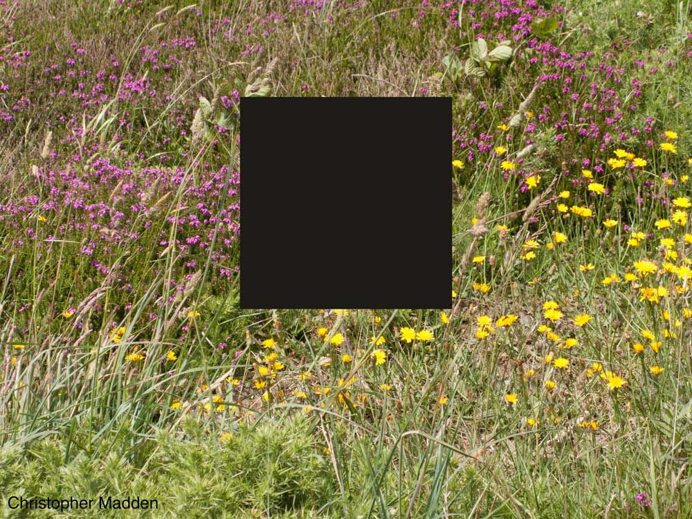 Art in the landscape - floating black square in landscape