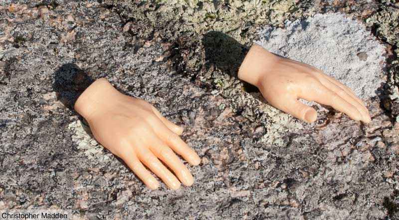 Contemporary art, Cornwall - dismembered toy hands on a rock