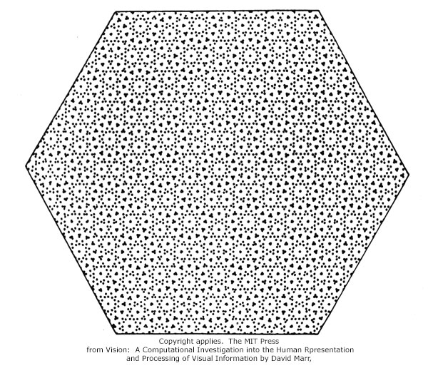 David Marr visual processing dot pattern