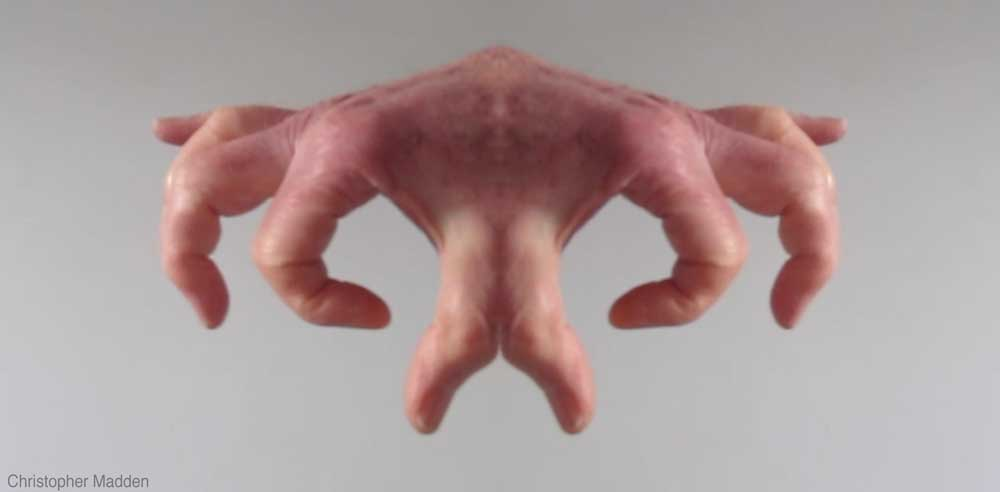 contemporary art - metamorphosis of a hand to become alien by reflection