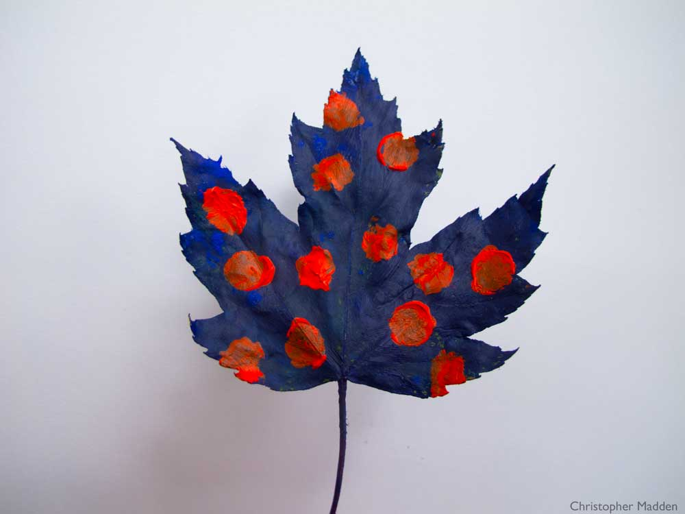 Contemporary art - a leaf painted blue with red polka dots