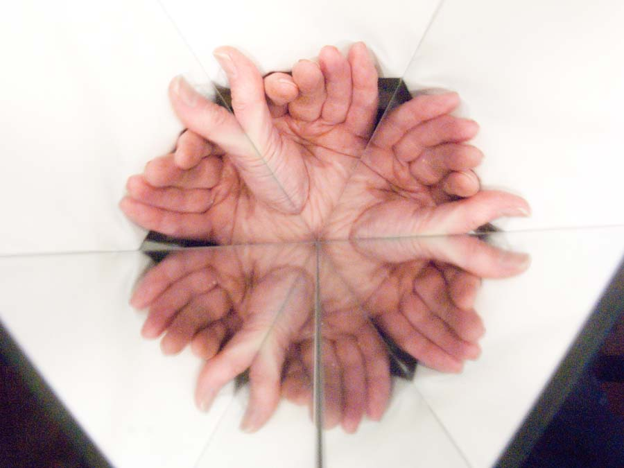 contemporary art - metamorphosis of a hand into sinister alien life-forms by reflection